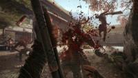 Shadow Warrior - Screen 2