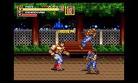 CTR-N-KSRE_gameplay_4a_1437575252